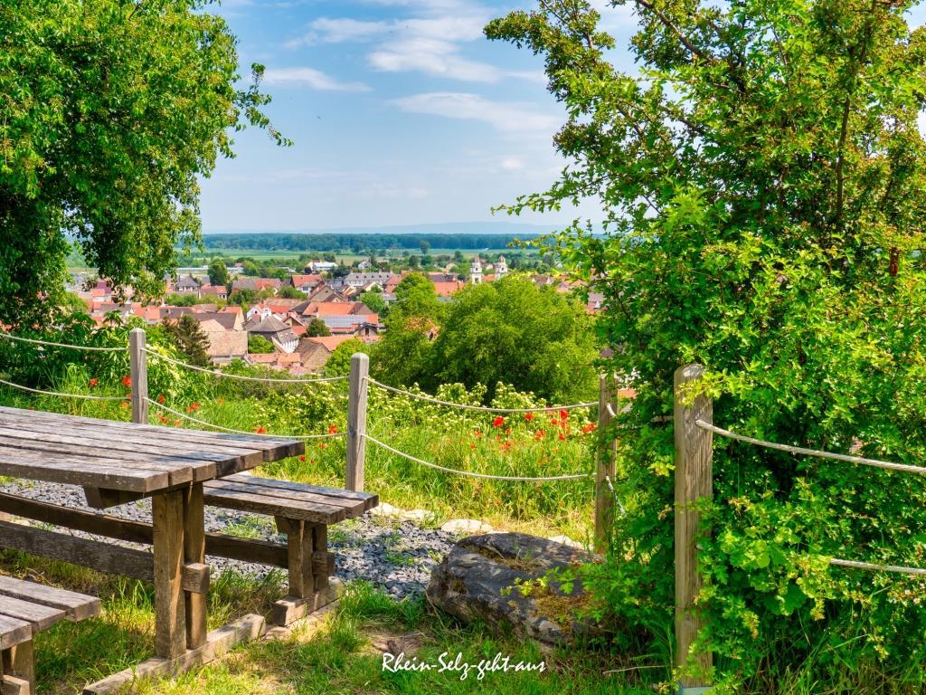 Rheinterrassenweg-