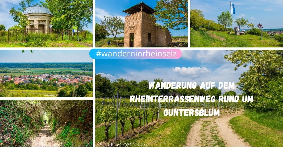 Rheinterrassenweg-Guntersblum